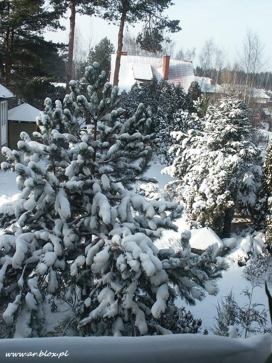 zimowykrajobraz1