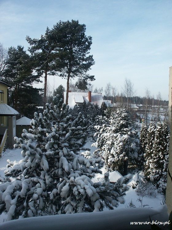 zimowykrajobraz6