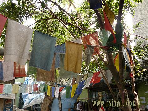 Delhi Tybetanczycy2011 019blox