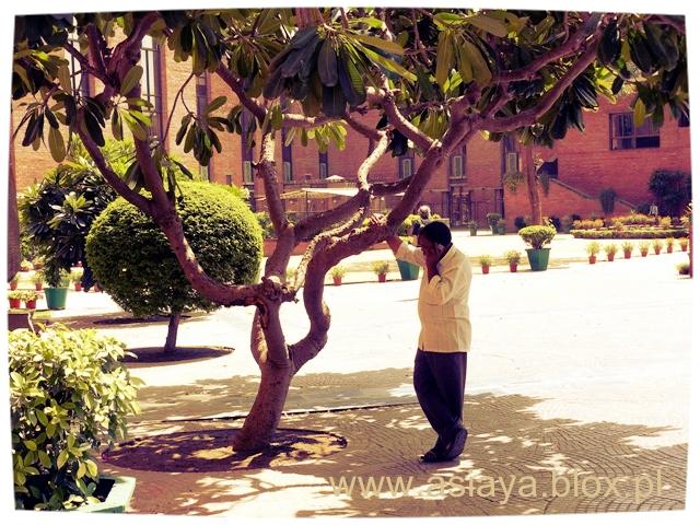 Delhi, IHC, 5