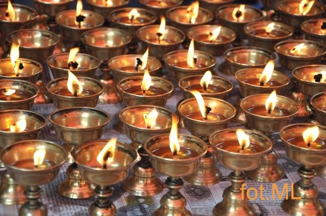 Tybetanczycy 5