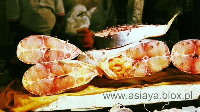 Delhi, targ rybny 8