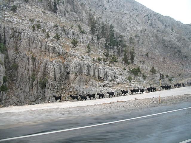 góry Taurus