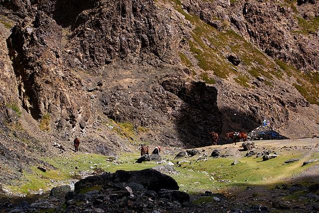 Mongolia - lodowa Dolina