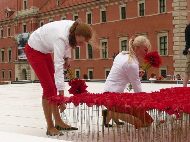 Makowy dywan - Flower by Kenzo w Warszawie