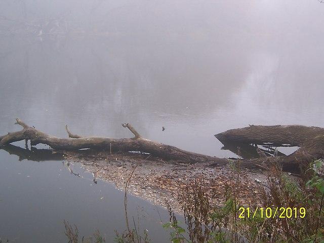 http://fotoforum.gazeta.pl/photo/0/qa/ka/ml4q/hc1GIG3U4bFw9z6acB.jpg