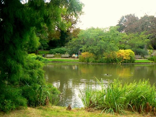 Regent's Park 19