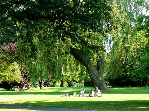 Regent's Park 23