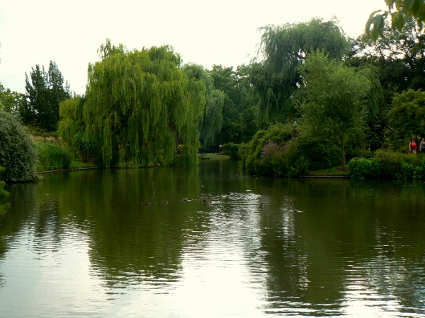 Regent's Park 18