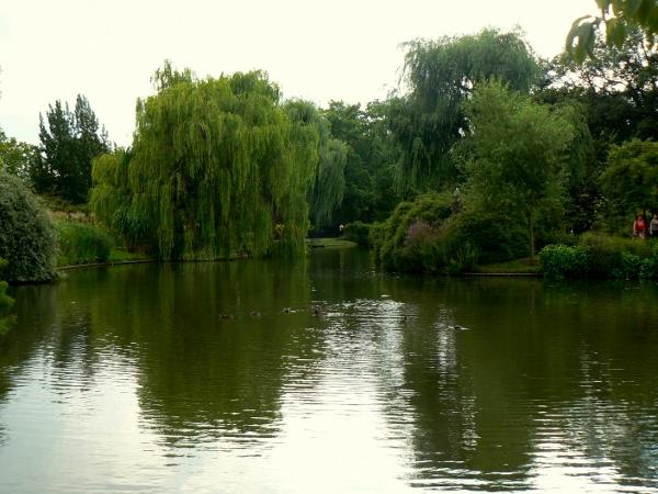 Regent's Park 18