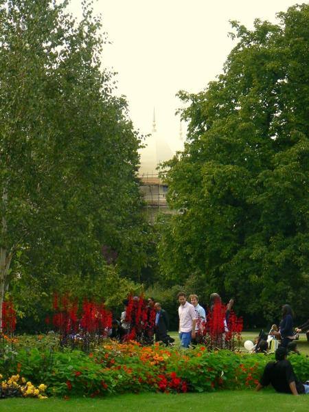 Regent's Park 11