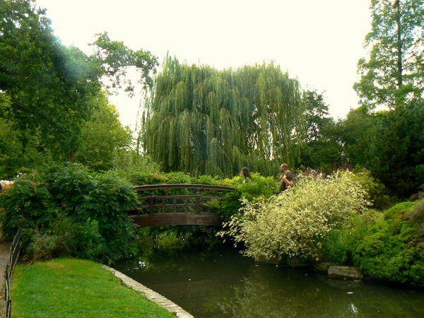 Regent's Park 20