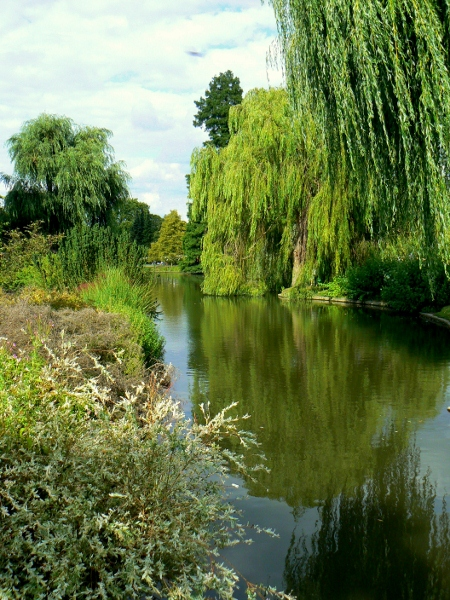 Regent's Park 22