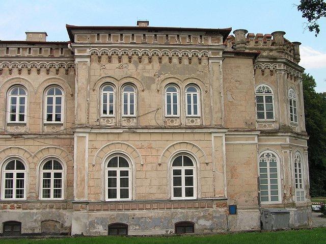 Tyczyn, Pałac Wodzickich