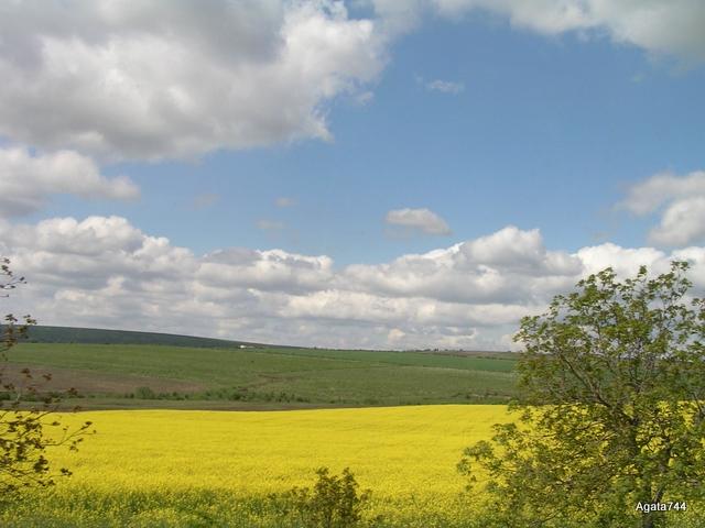 Mołdawia
