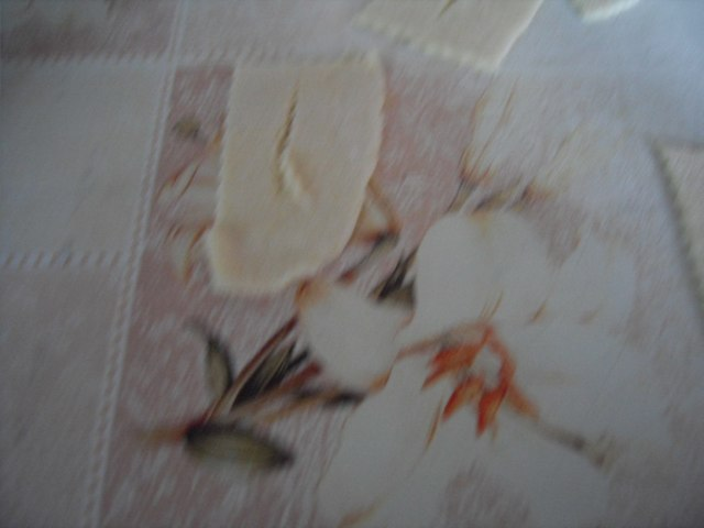 http://fotoforum.gazeta.pl/photo/0/wa/qa/uuil/Rslu5N7xm9jmlopppB.jpg