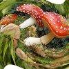 http://fotoforum.gazeta.pl/photo/0/wa/qa/uuil/l1BTp779nnatwTAfYA.jpg