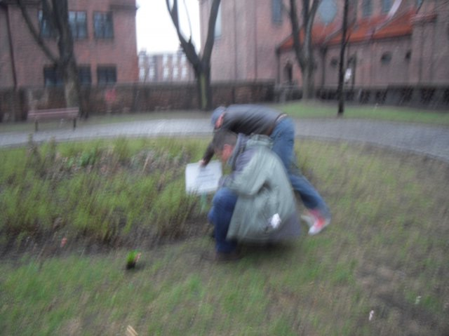 http://fotoforum.gazeta.pl/photo/0/wa/qa/uuil/rE6KO4CwDZieQHxv5B.jpg