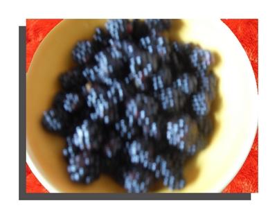 http://fotoforum.gazeta.pl/photo/0/wa/qa/uuil/u8RfnJb84qaHZsNcrX.jpg