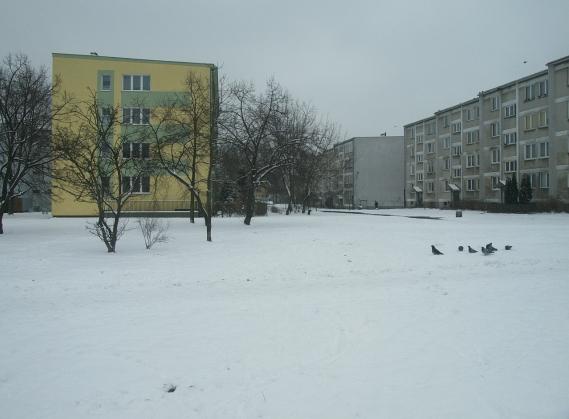 http://fotoforum.gazeta.pl/photo/1/ri/td/f74i/HA6t34iuWYp5IWs9KX.jpg