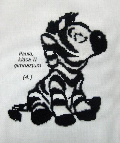 zebra Pauli