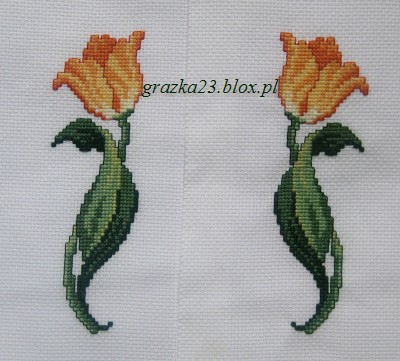 tulipany1 i 2