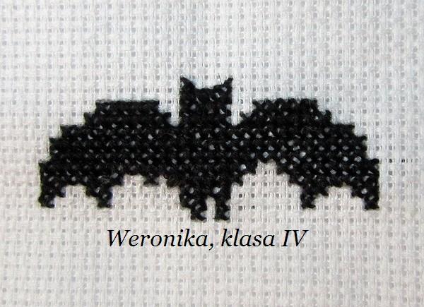 kotek Weroniki