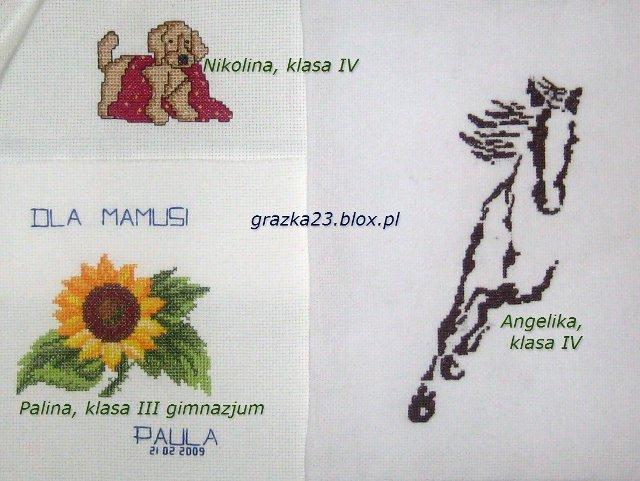 kon, kwiat, piesek