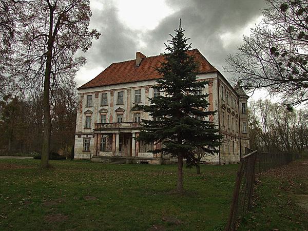 Znalezione obrazy dla zapytania Pałac w szczepanowie