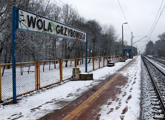 stacja wola grzybowska