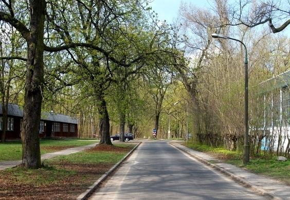 Bielany - teren Akademii Wychowania Fizycznego