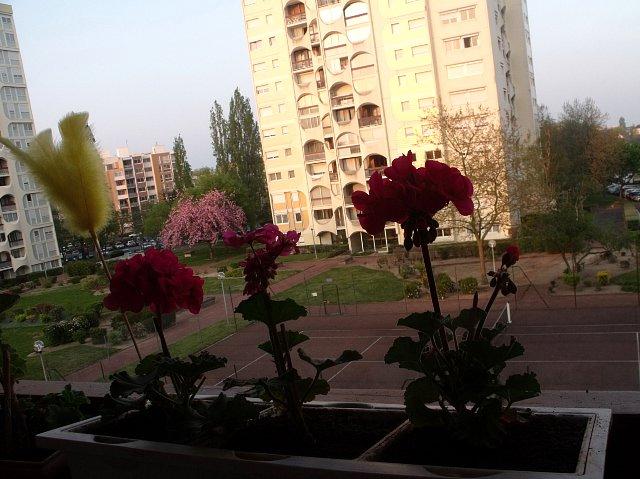 http://fotoforum.gazeta.pl/photo/3/mf/ji/cvpa/bGwT9qp9J0NxhUHGuB.jpg