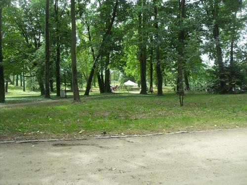 http://fotoforum.gazeta.pl/photo/3/wd/qa/jcow/AbHdlzQn9ODUjUA2nX.jpg