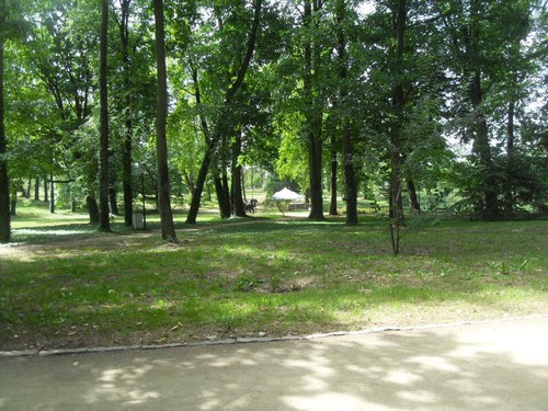 http://fotoforum.gazeta.pl/photo/3/wd/qa/jcow/LlJccQgOT0RywVEvRX.jpg