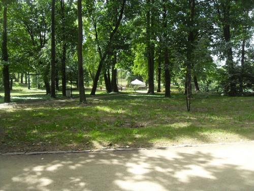 http://fotoforum.gazeta.pl/photo/3/wd/qa/jcow/ZAOzAa4fohaA5RbMnX.jpg