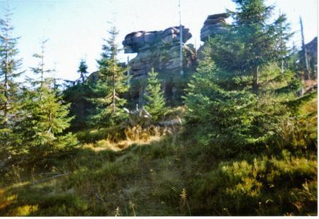 Skalne Lwy Hutniczy Grzbiet Karkonosze
