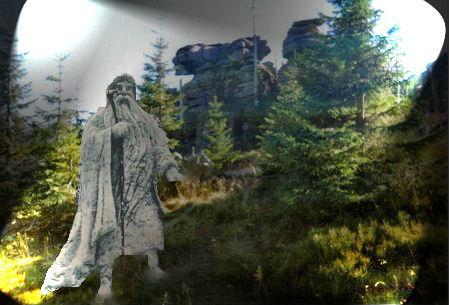 Liczyrzepa jedyny mieszkaniec Bażynowych Skał na Hutniczym Grzbiecie
