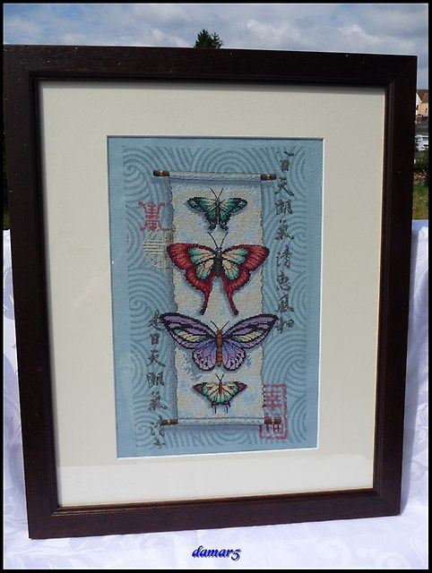 Butterfly Scroll marzec2015j