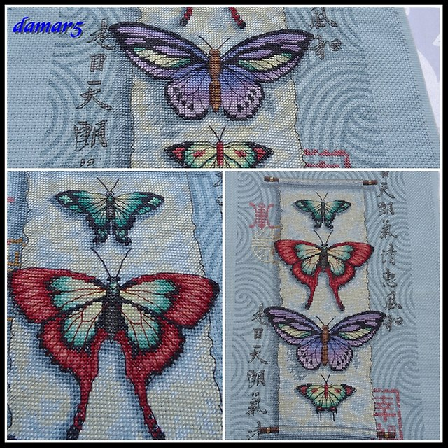 Butterfly Scroll marzec2015f