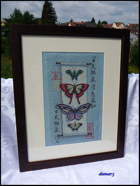 Butterfly Scroll marzec2015k