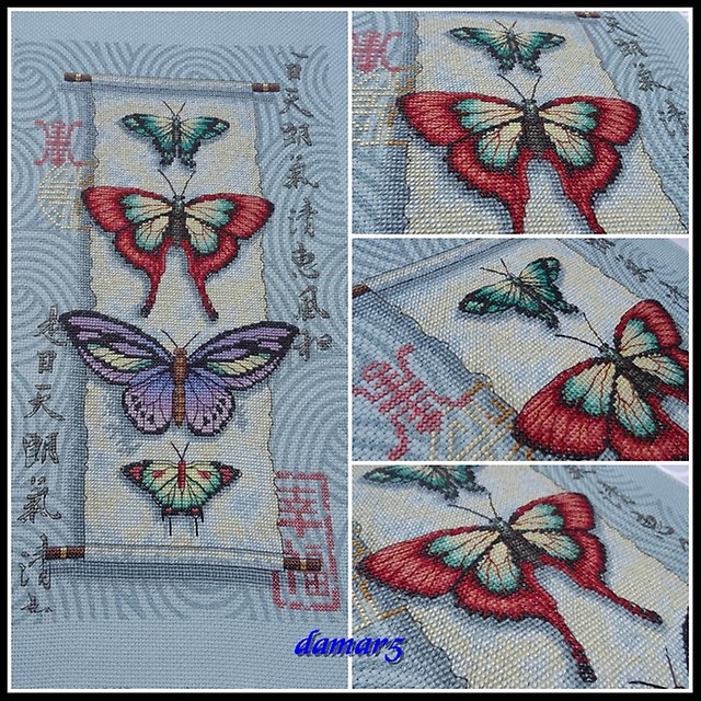 Butterfly Scroll marzec2015