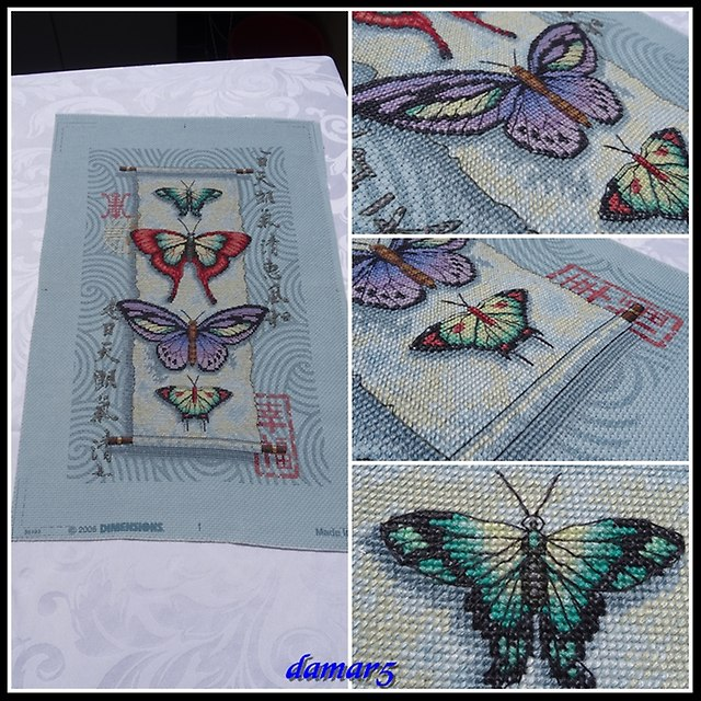 Butterfly Scroll marzec2015a