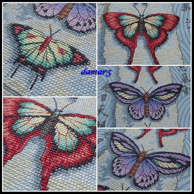 Butterfly Scroll marzec2015b