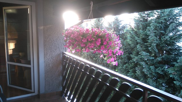 http://fotoforum.gazeta.pl/photo/5/id/vc/tyrg/cNV4Eslg9rDOuS0gYB.jpg
