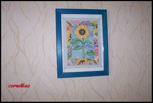 sunflowersierpien2015d