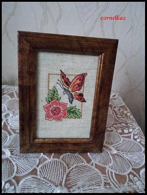 motylzkwiatemstyczen2019