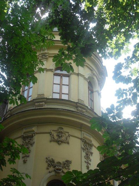 http://fotoforum.gazeta.pl/photo/6/pe/gc/rxw2/vDvtjV29ccYF8kIYTB.jpg