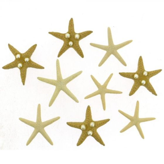 9365-starfish-wishes-600x600