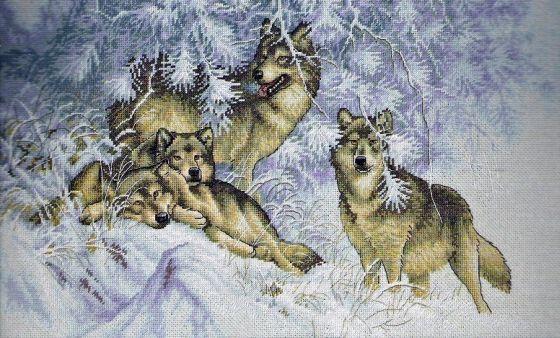 с изображением волка