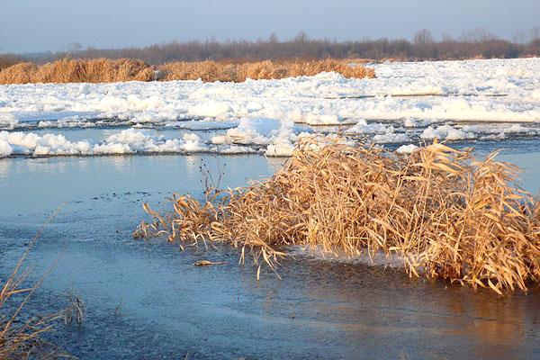 lód nawarstwiony